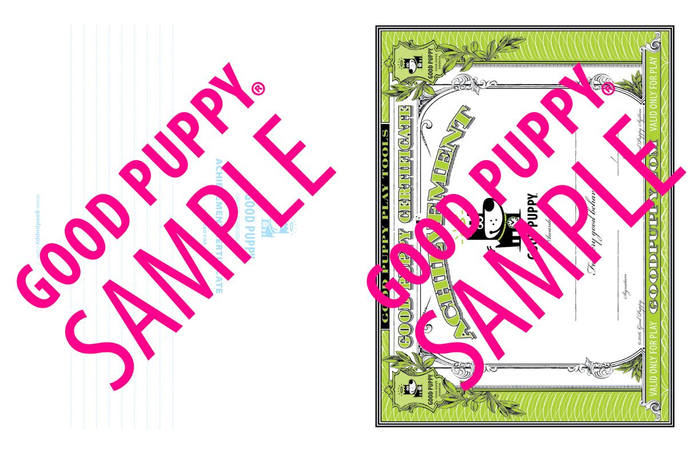 GoodPuppy-Children_Behavioral_System-ManualAndToolkit-Full_Sample-46.jpg