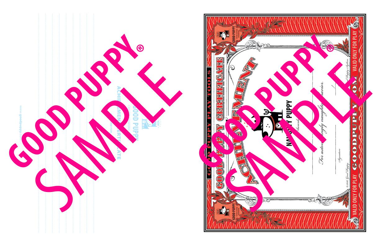 GoodPuppy-Children_Behavioral_System-ManualAndToolkit-Full_Sample-48.jpg