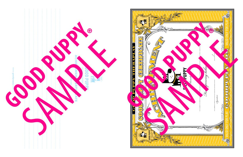 GoodPuppy-Children_Behavioral_System-ManualAndToolkit-Full_Sample-47.jpg