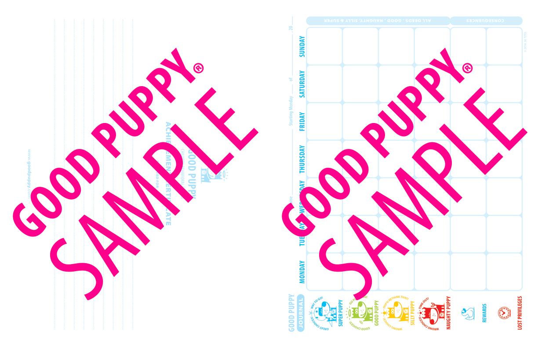 GoodPuppy-Children_Behavioral_System-ManualAndToolkit-Full_Sample-49.jpg