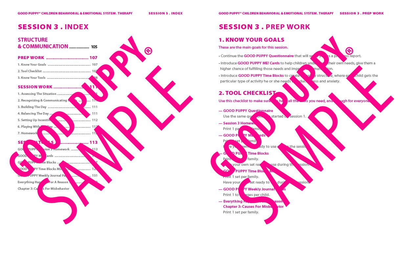 GoodPuppy-Children_Behavioral_System-ManualAndToolkit-Full_Sample-54.jpg