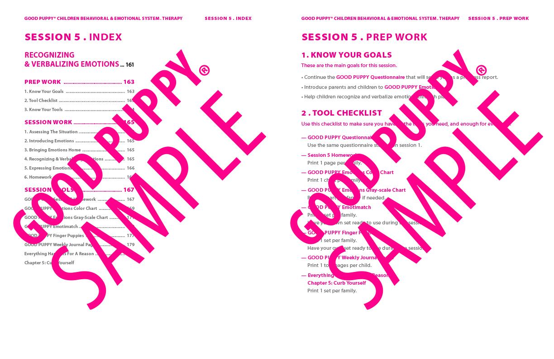 GoodPuppy-Children_Behavioral_System-ManualAndToolkit-Full_Sample-82.jpg