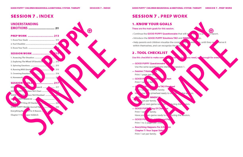 GoodPuppy-Children_Behavioral_System-ManualAndToolkit-Full_Sample-107.jpg