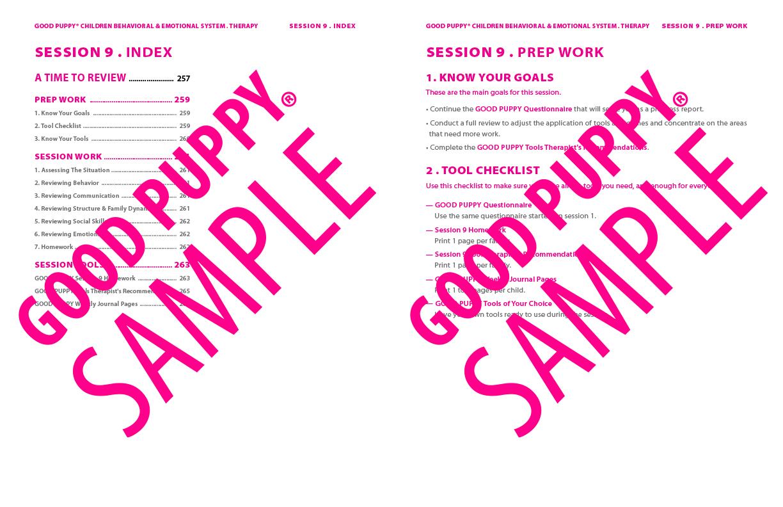 GoodPuppy-Children_Behavioral_System-ManualAndToolkit-Full_Sample-130.jpg