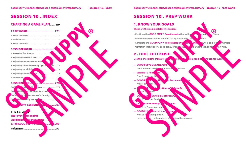 GoodPuppy-Children_Behavioral_System-ManualAndToolkit-Full_Sample-136.jpg