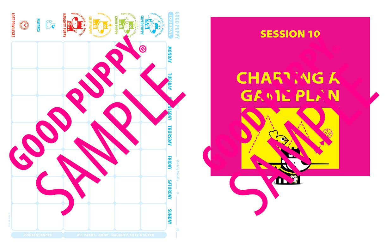 GoodPuppy-Children_Behavioral_System-ManualAndToolkit-Full_Sample-135.jpg