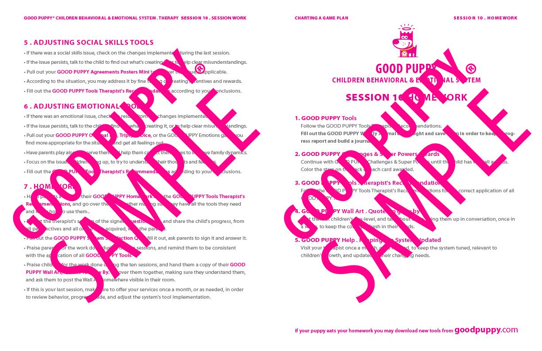 GoodPuppy-Children_Behavioral_System-ManualAndToolkit-Full_Sample-138.jpg