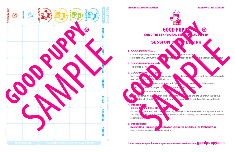 GoodPuppy-THERAPY-Streamlined_Toolkit-Full_Sample-19.jpg