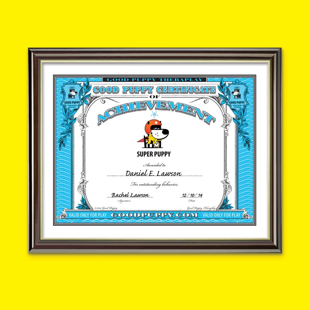 2-Child-Behavioral-Rewards-Certificate-Of-Achievement-Large-Framed.jpg