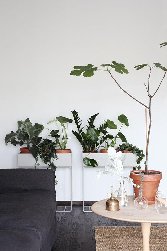 Ferm Living planter boxes.