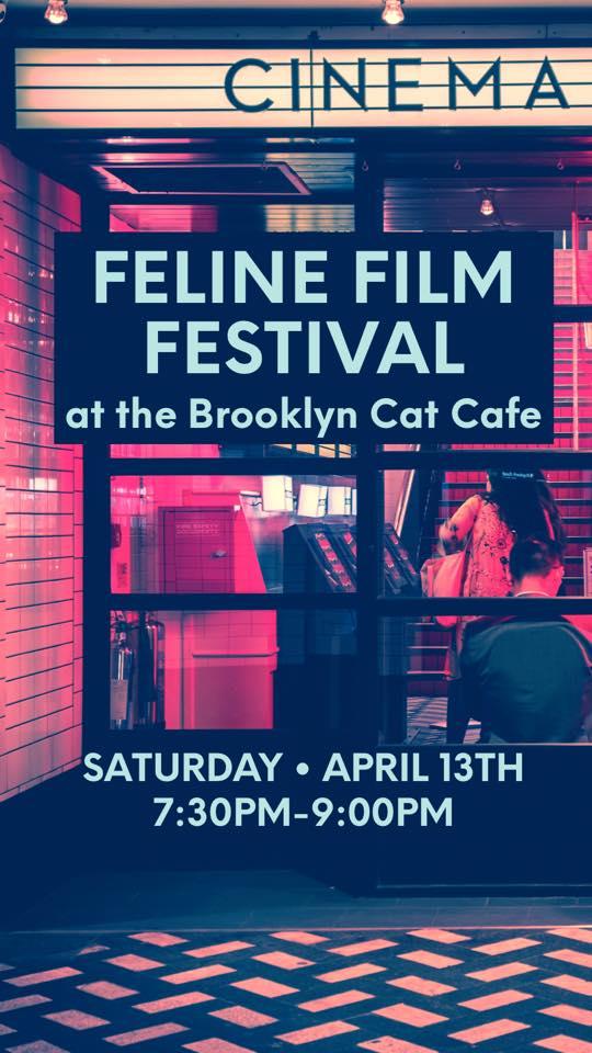 Feline Film Festival.jpg