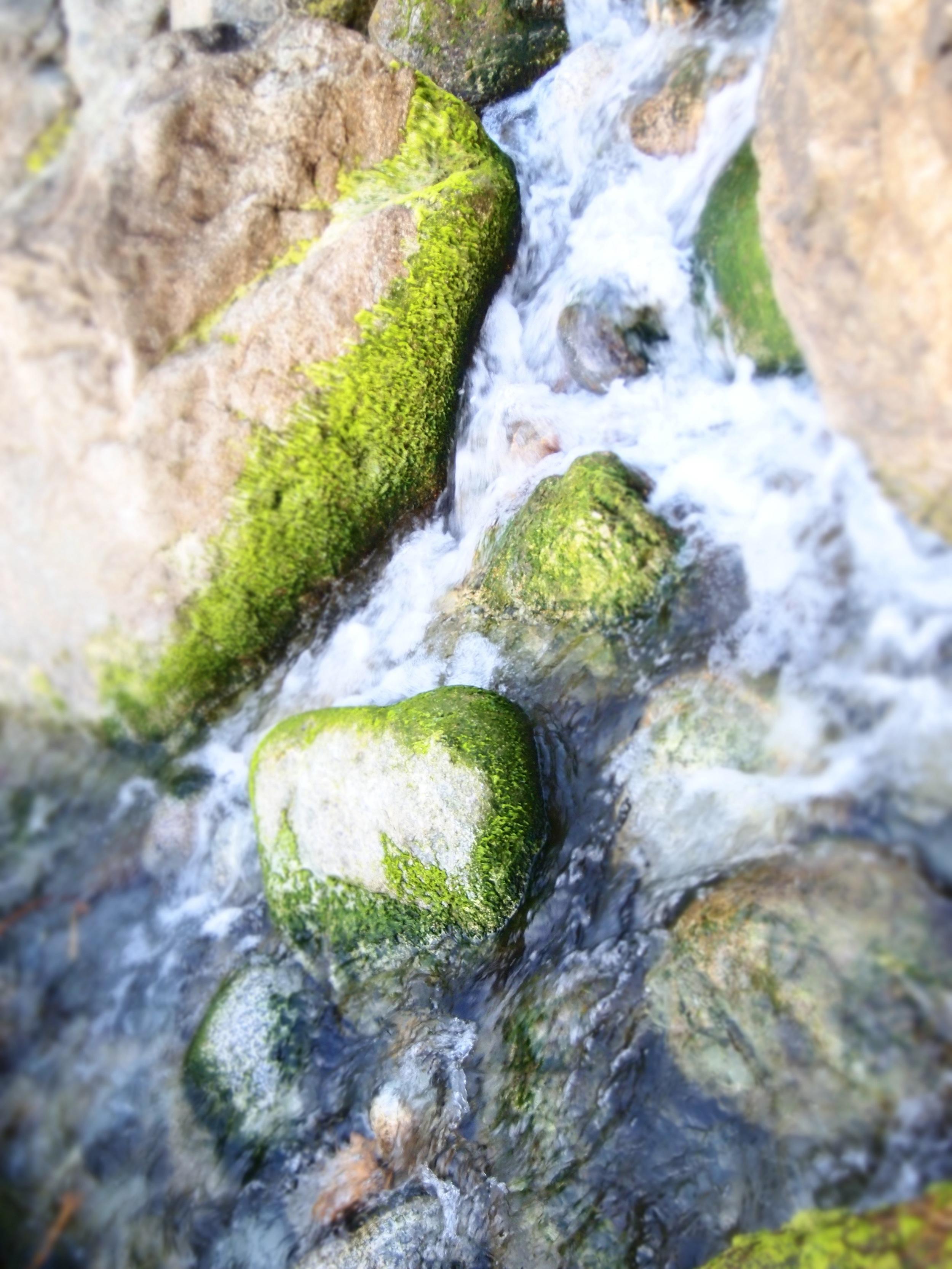 water woman 1.jpeg