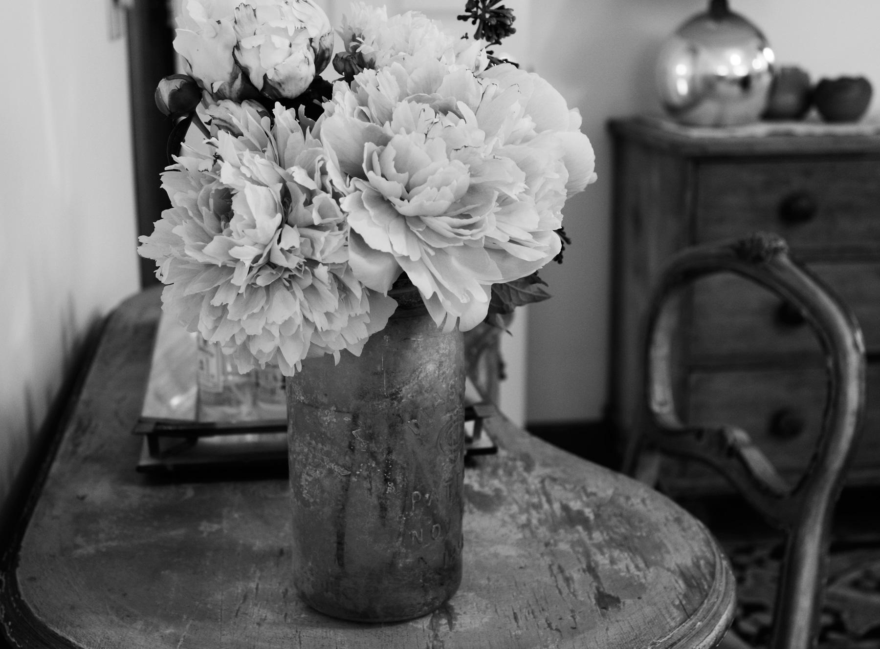 _MG_1840amiflowers1.jpg