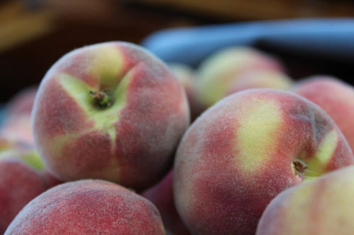 TVF-more1-peaches-organic.jpg