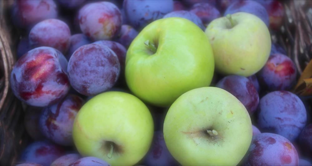 new-slider-apples-plums.jpg