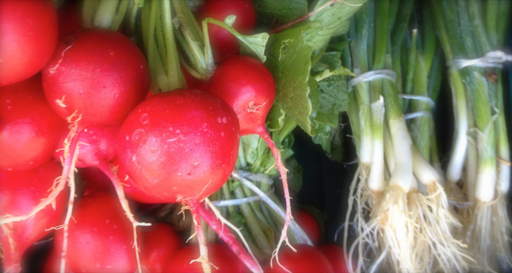 new-slider-radishes.jpg
