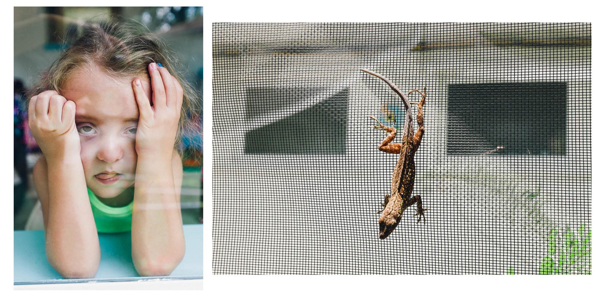 Carlos_Detres_Photo_Carlos_Detres_Photo_150623_Dead Lizard Face.jpg