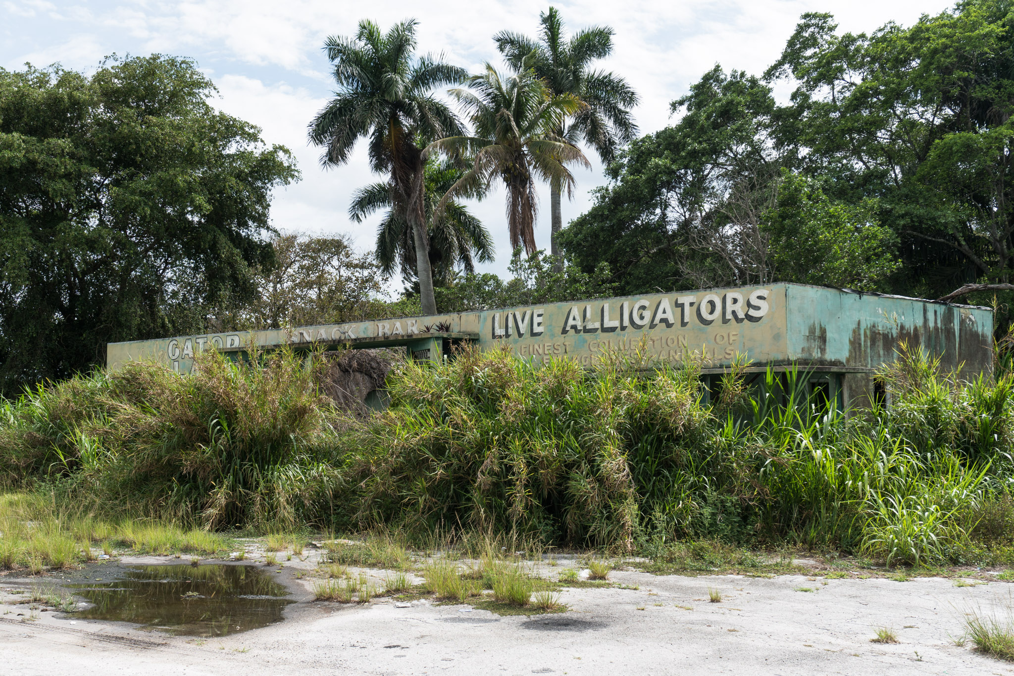 An abandoned roadside attraction. (South Florida)