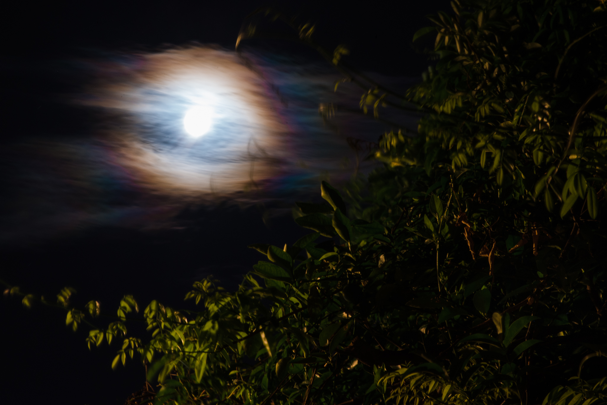 A full moon over New Orleans, LA.