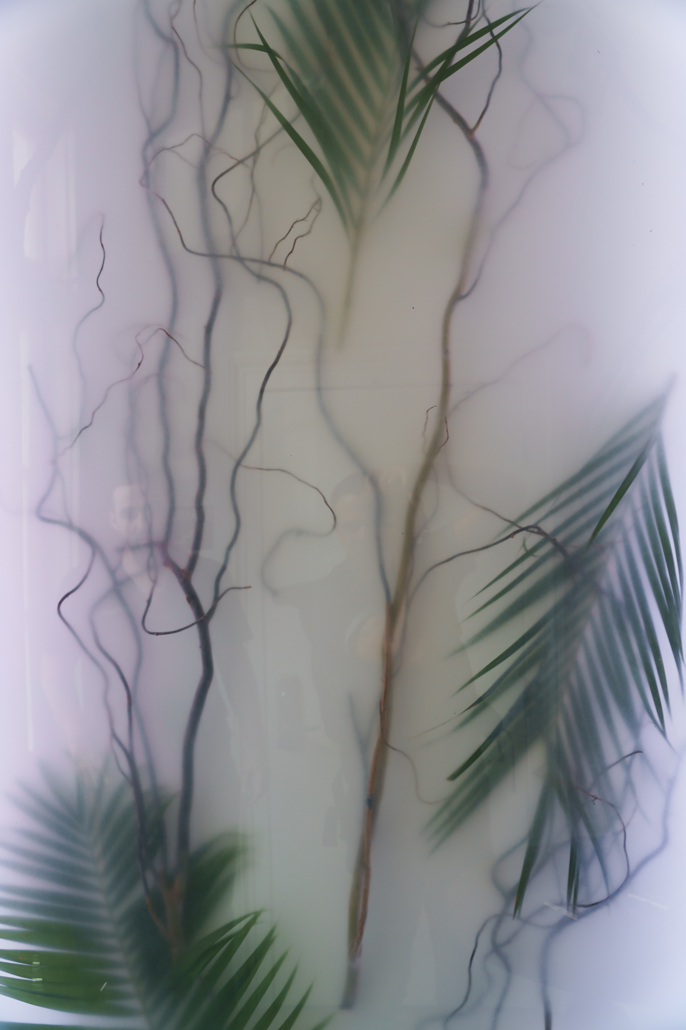 170719-CarlosDetres-DSC07460.jpg