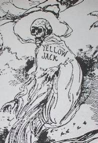 """Yellow fever was known by many names including """"Yellow Jack"""", which was after ships carrying victims of the pestilence were required to display a yellow flag."""