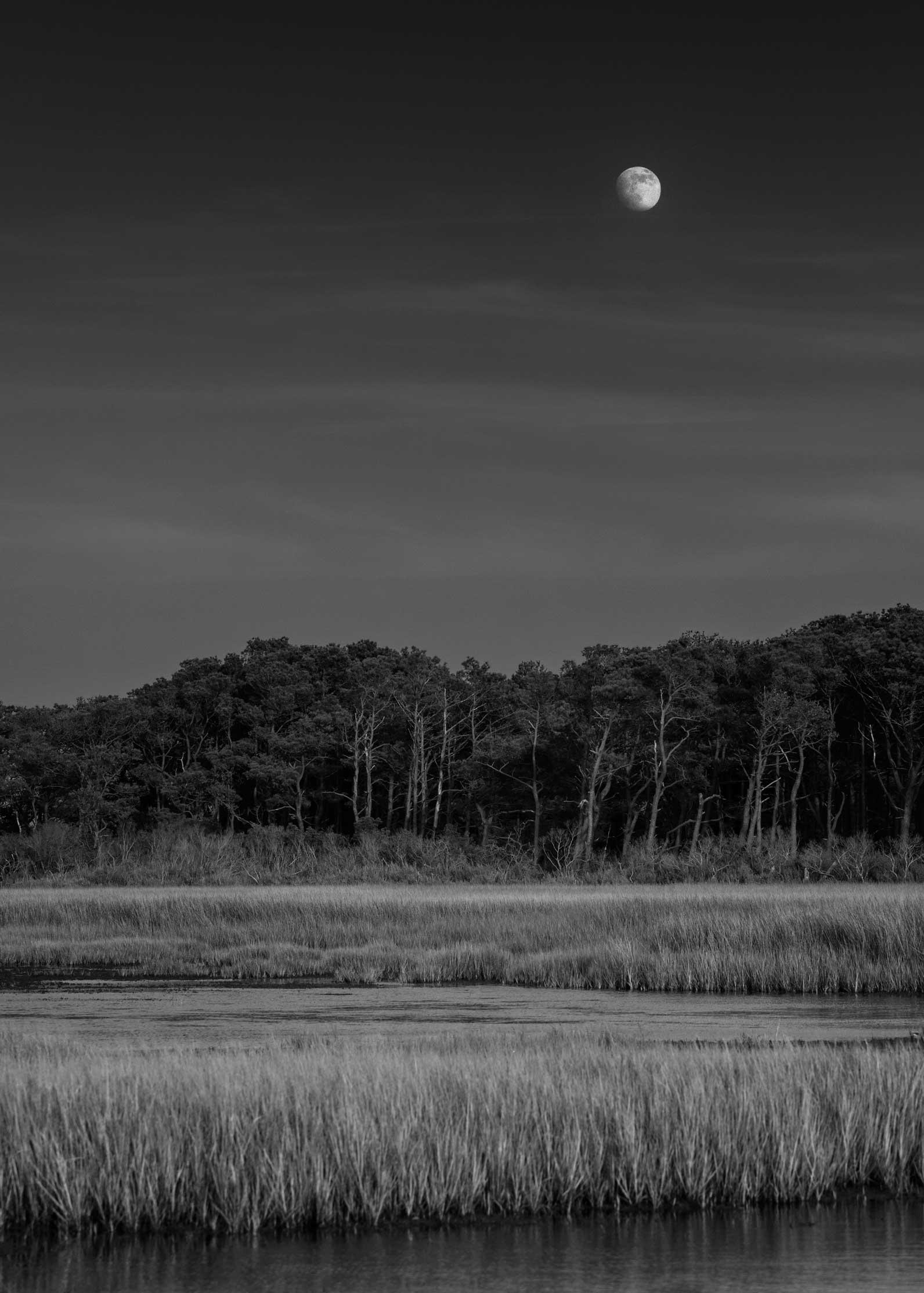 moonrise.jpg