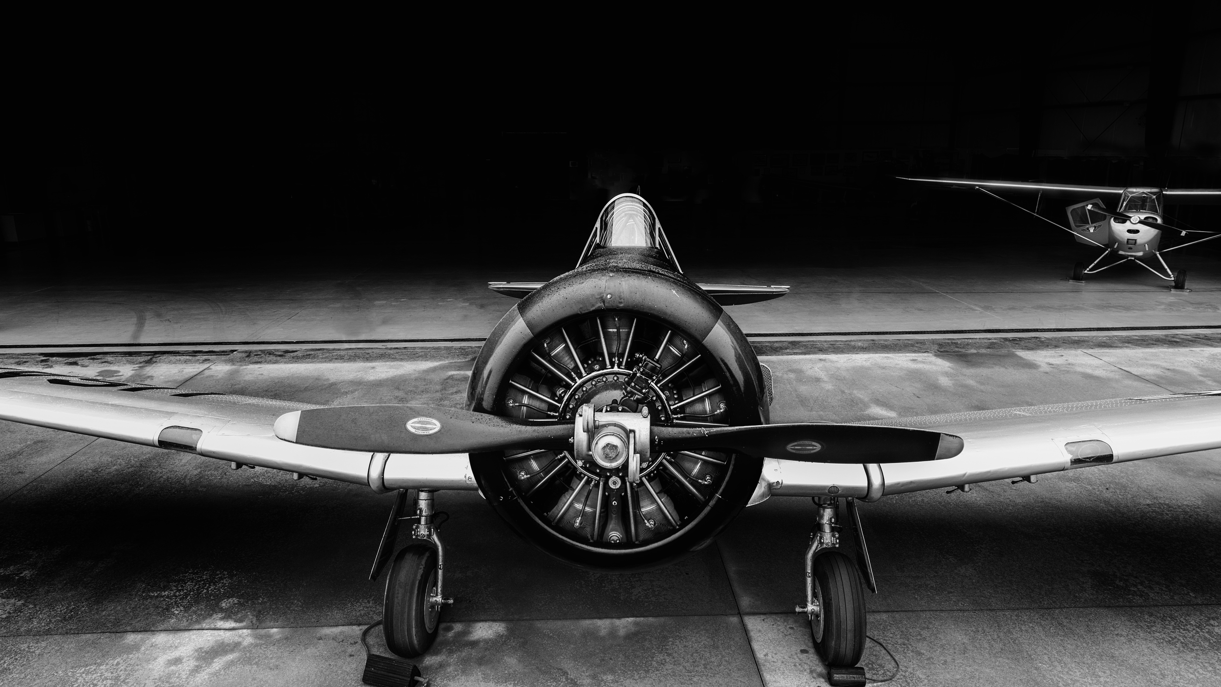 Emerging Texan: A US LT-6 Texan aircraft with an L-16 in the background. This photograph makes me think the Texan is emerging from the hangar to get ready for its next mission during World War II.