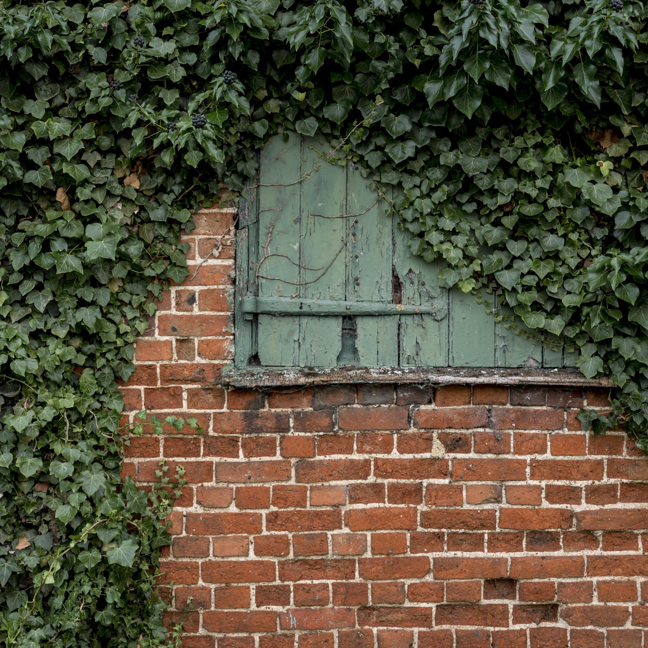 Window Dressing - Leica SL & 24-90mm @ f/3.3, 1/40 sec