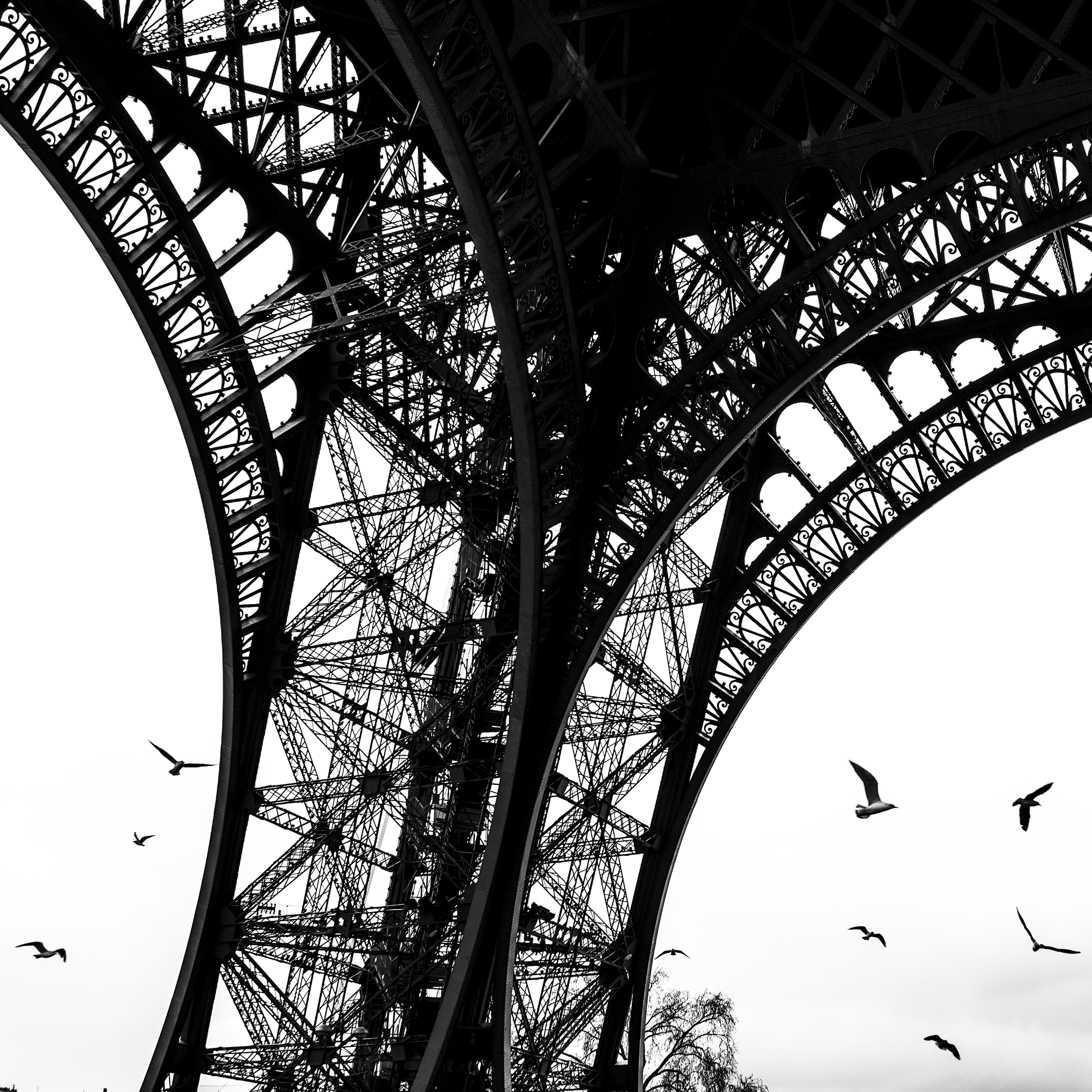 The Leica SL produces incredibly sharp and detailed images. You can practically zoom in forever on the details of the metal framing on the Eiffel Tower in this photograph.