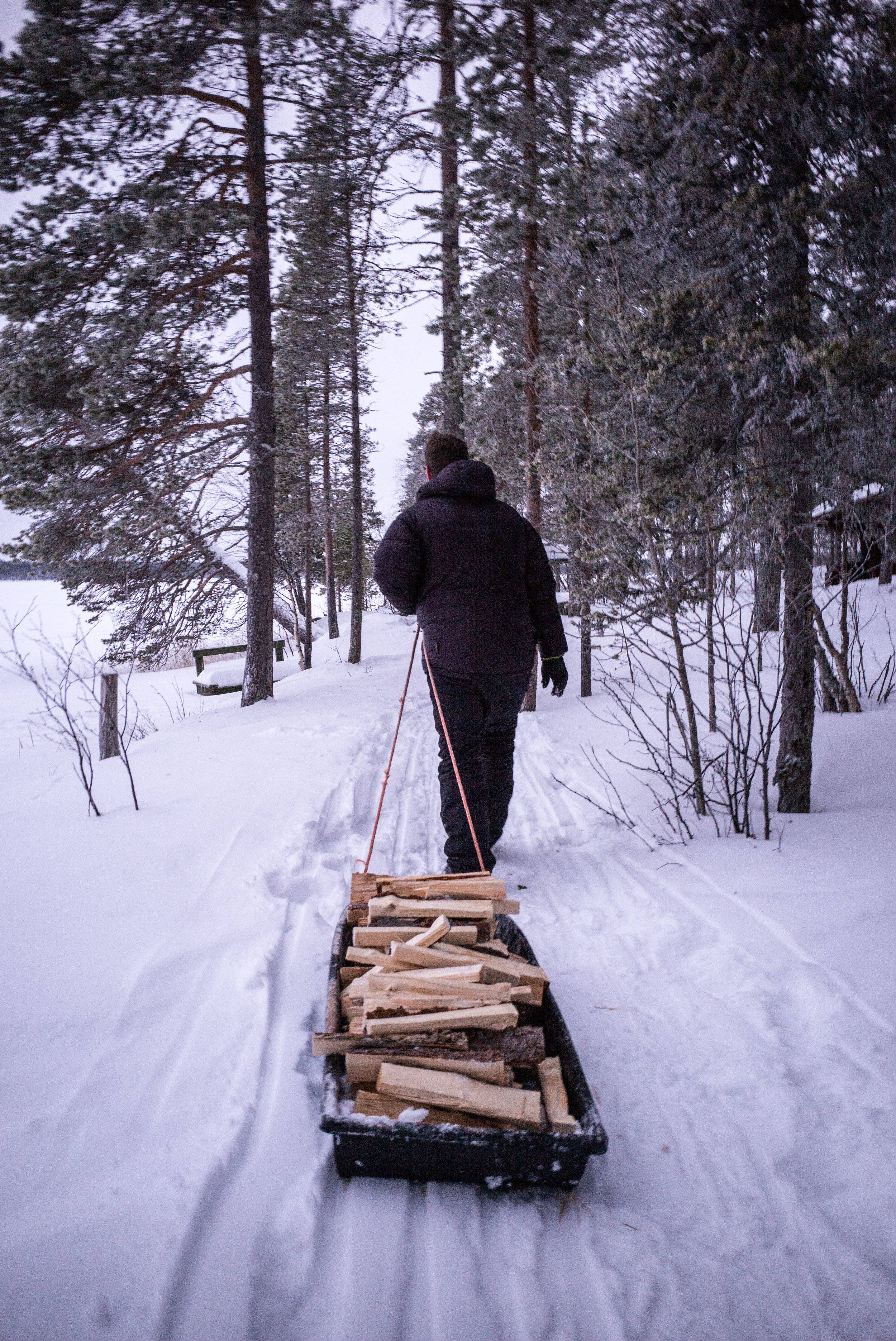 Firewood - one of the many chores