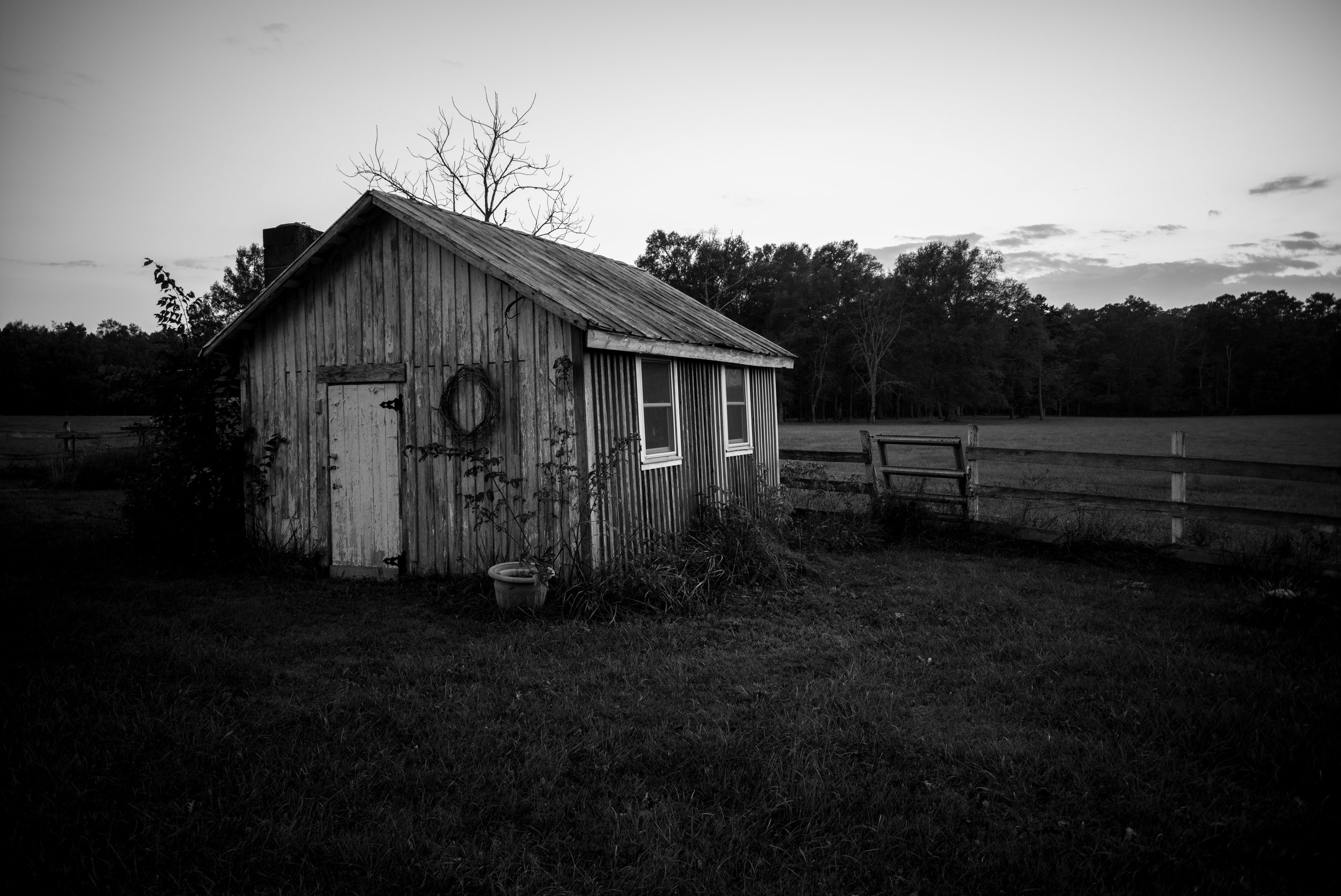 A shed sitting along the edge of the property.