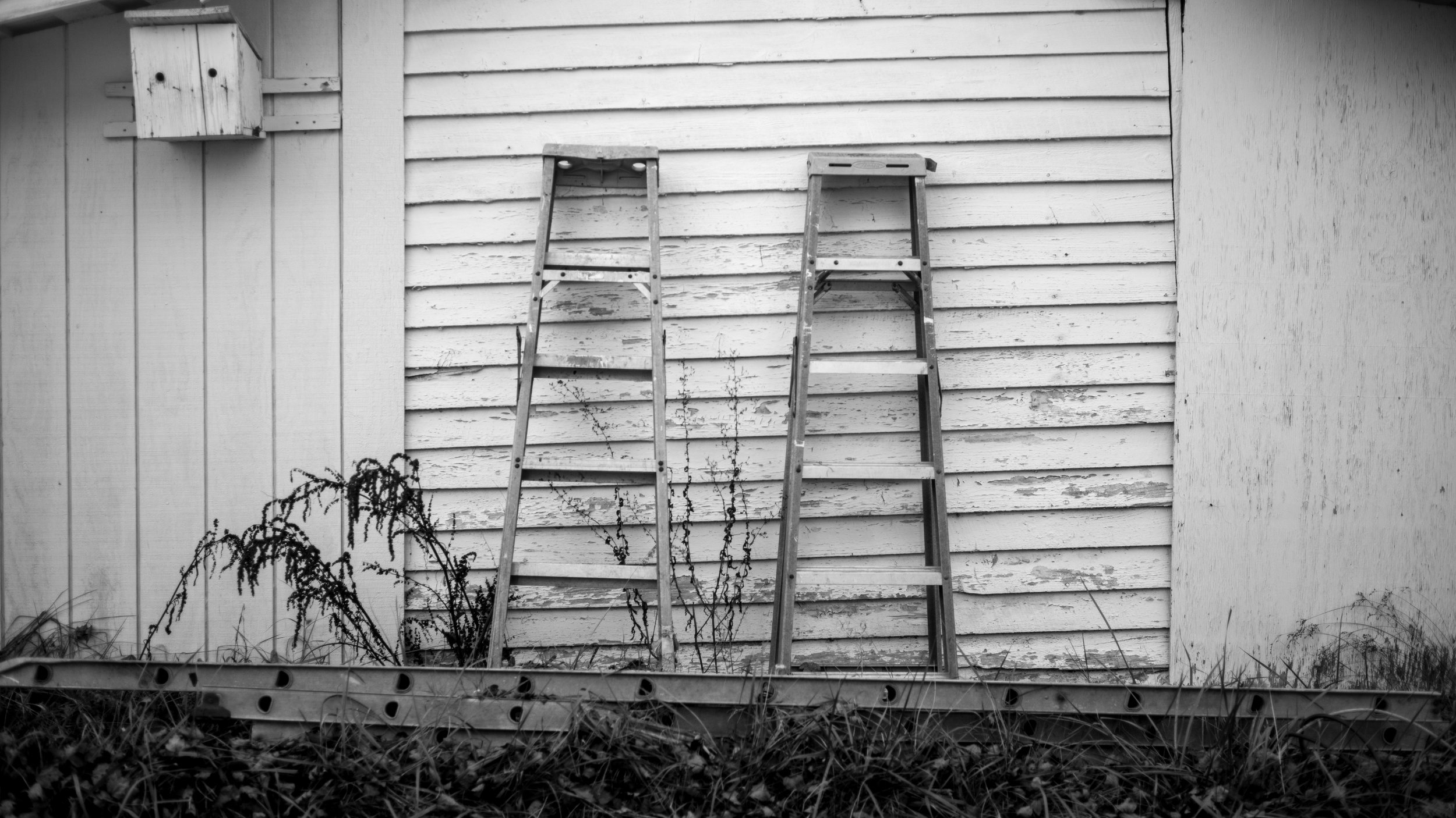 Two ladders leaning up on the side of the workshop