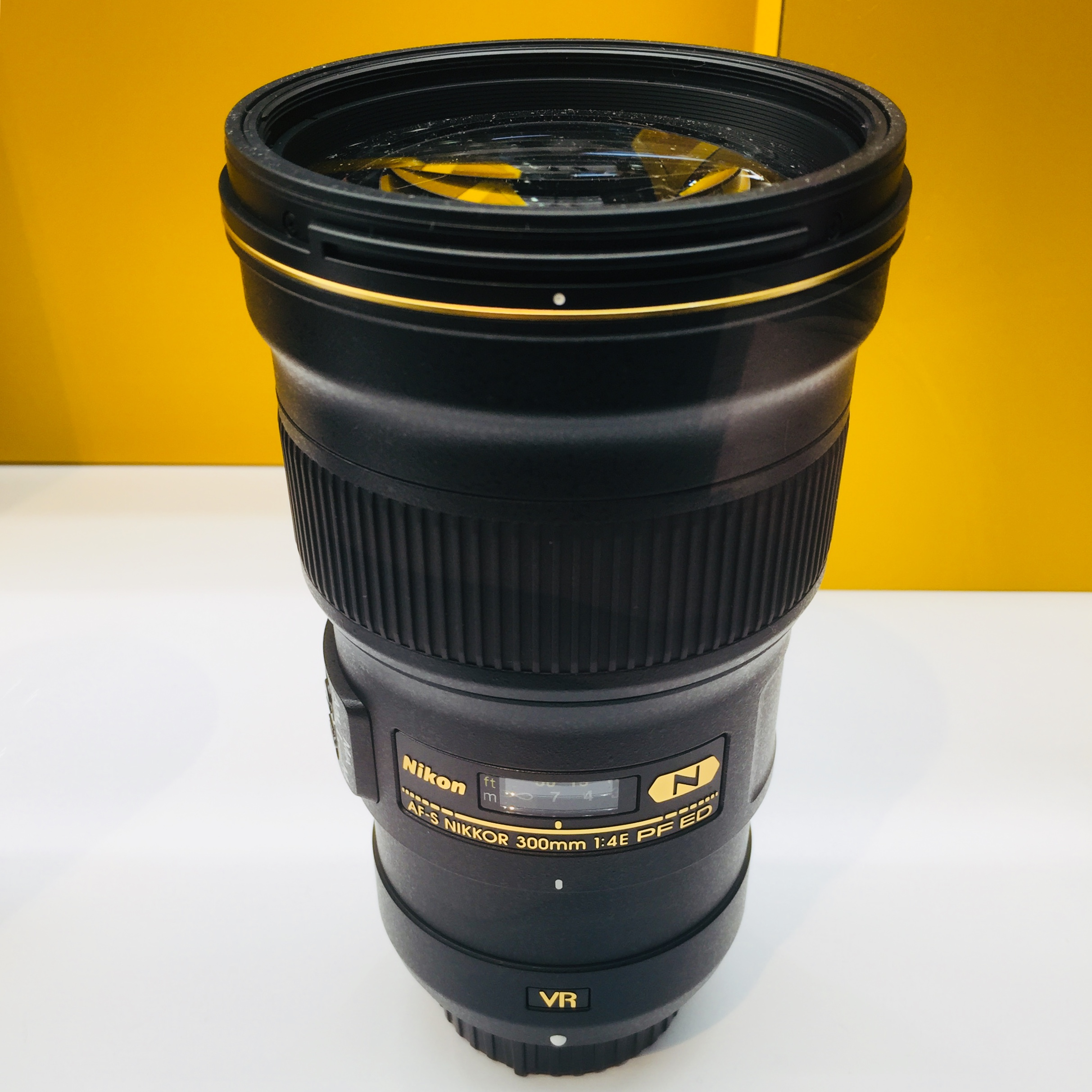 The Nikon 300mm f/4 lens - this thing is an incredible travel telephoto lens