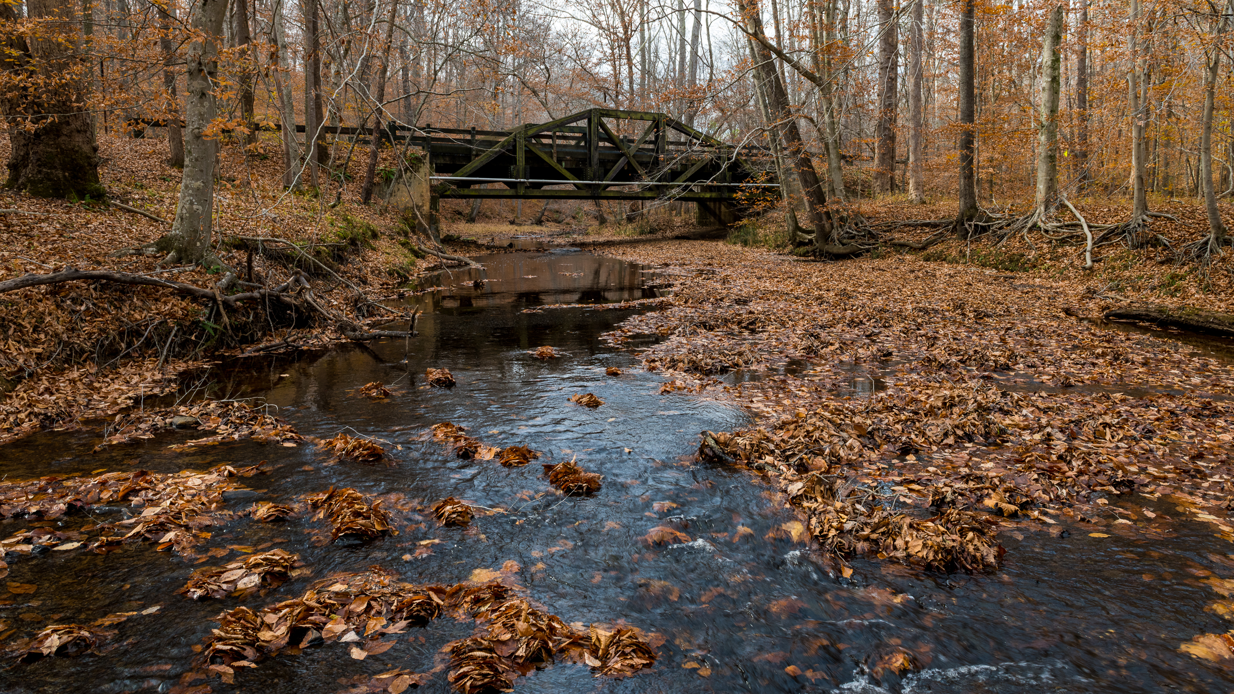 Another bridge at the edge of the Prince William Forest scenic drive