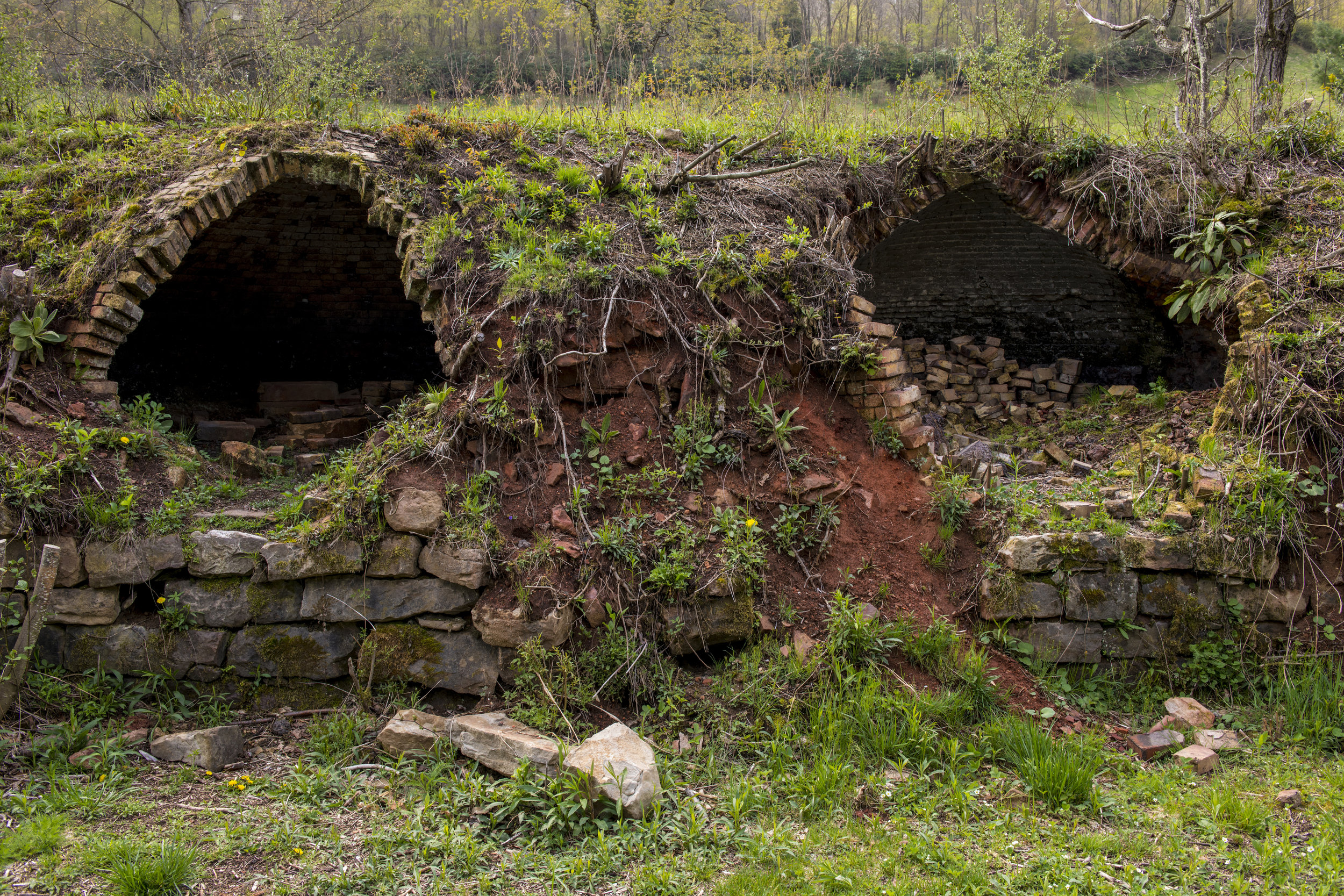 Old beehive coke ovens line the roadway leading to Douglas Falls. At one time, there were over 500 of these ovens polluting the surrounding habitats.
