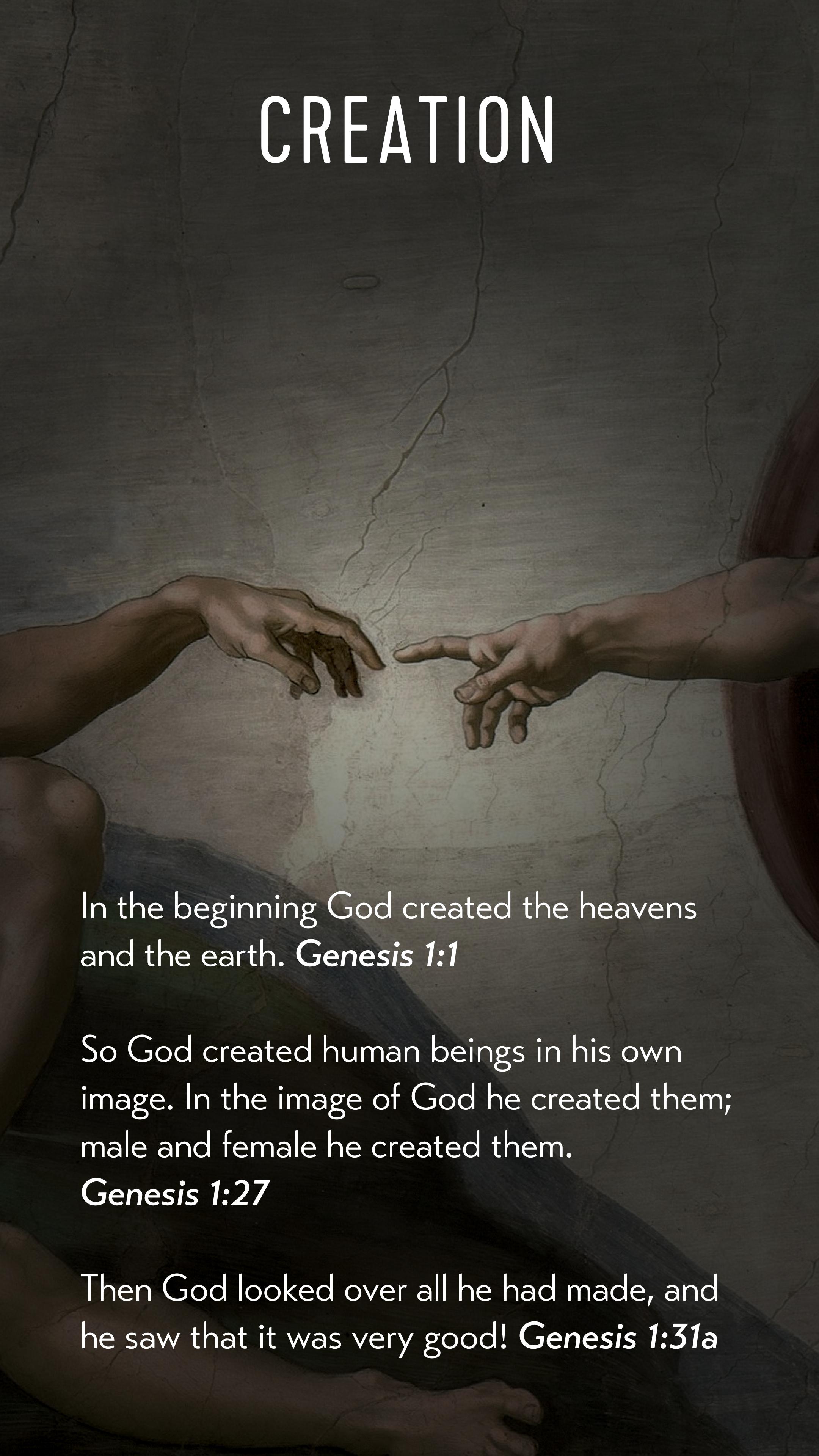 1 Creation.jpg