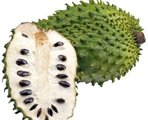 Guanabana or Soursop  is grown in tropical regions including South America and Northern Africa.