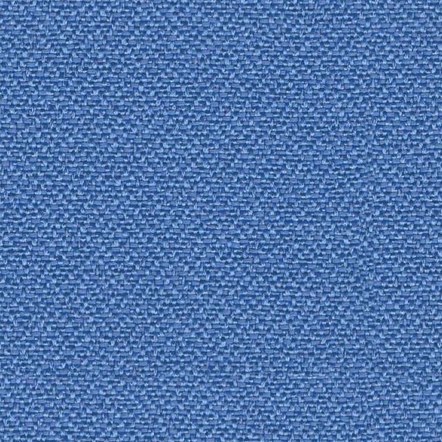 YB097 Bluebell
