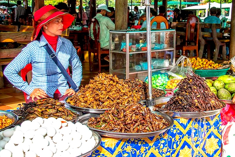 Cambodia Market Insects