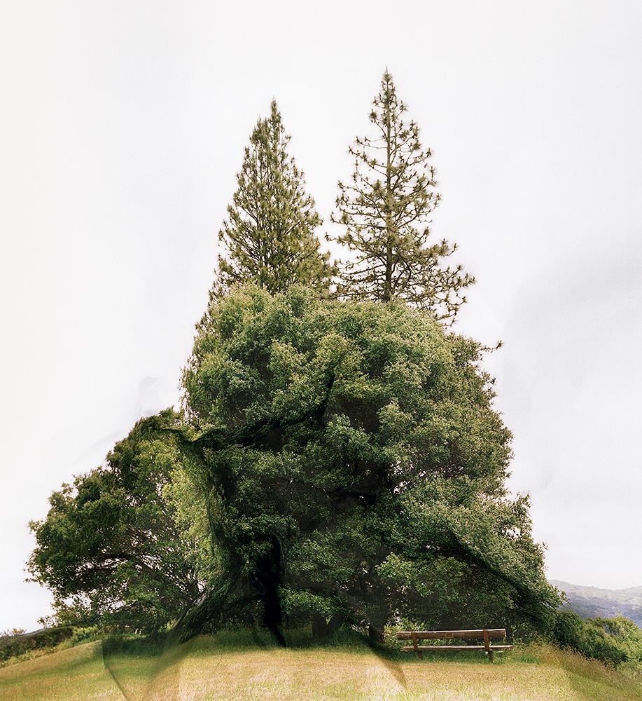 Response to Print of Inspiration Point, California, 2011  byLaura Plageman | Archival Pigment Print