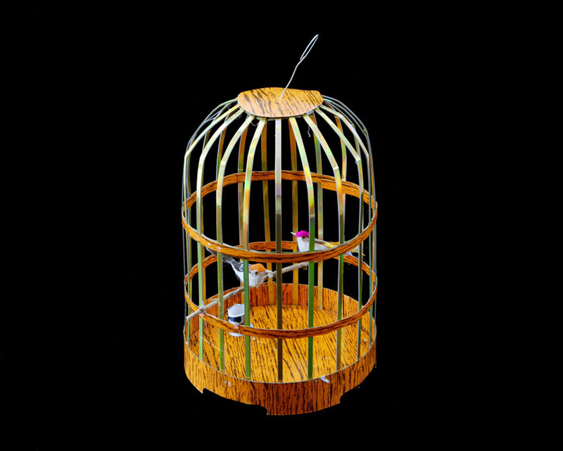 Birdcage byKurt Tong| Digital C-Print
