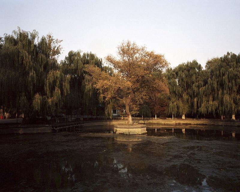 People's Park #6 byKurt Tong| Digital C-Print