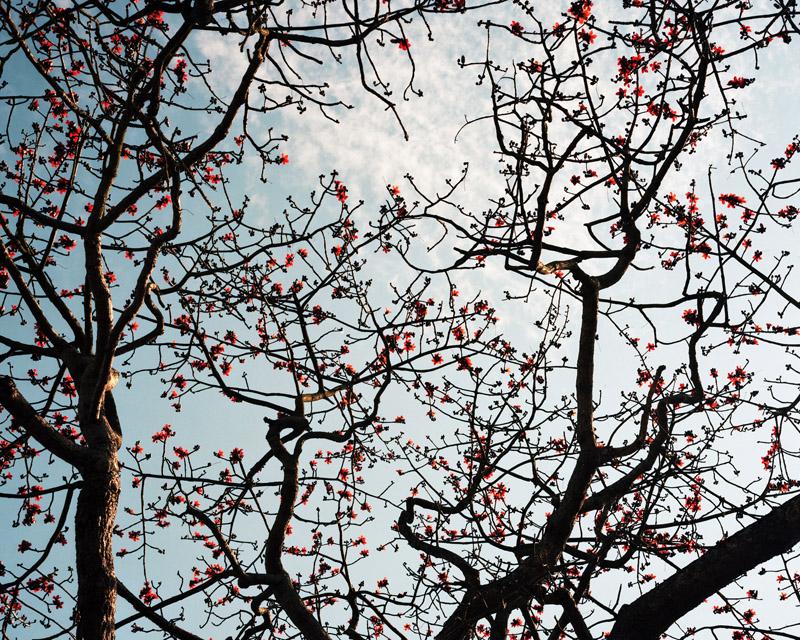 Untitled 1 byKurt Tong| Digital C-Print