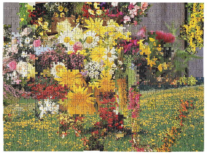 Puzzle #2 by Kent Rogowski | Puzzle Assemblage and Digital C-Print
