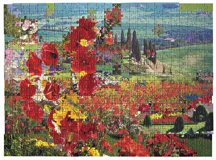 Puzzle #9 by Kent Rogowski | Puzzle Assemblage and Digital C-Print