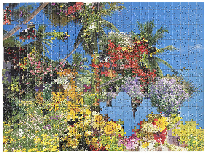 Puzzle #7 by Kent Rogowski | Puzzle Assemblage and Digital C-Print