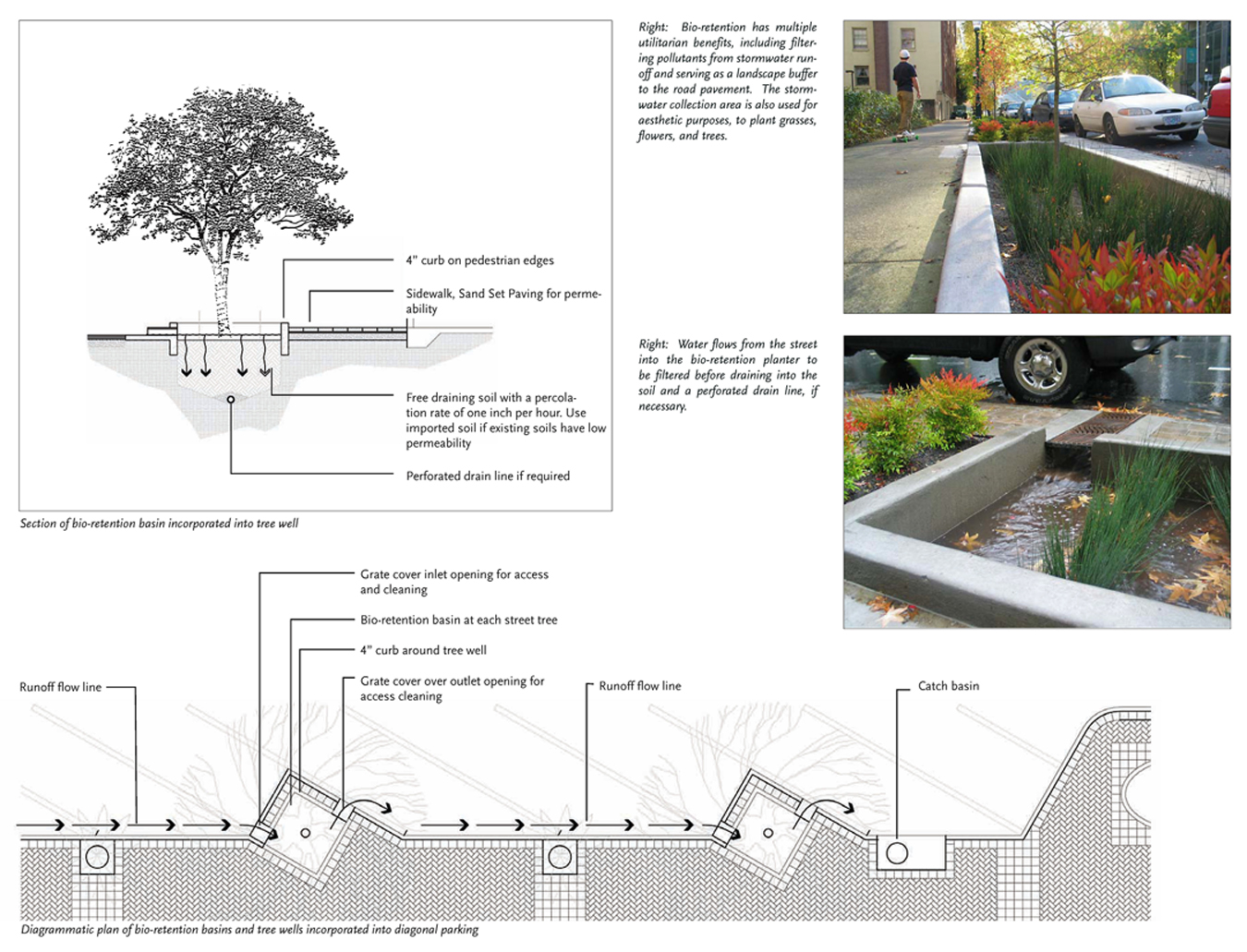 Another example of intertwining design strategies with implementation strategies is to provide enough detail [e.g. of bioretention basins, tree wells and diagonal parking] such that the plan can be implemented with great ease.  Source:  Moule & Polyzoides Architects and Urbanists