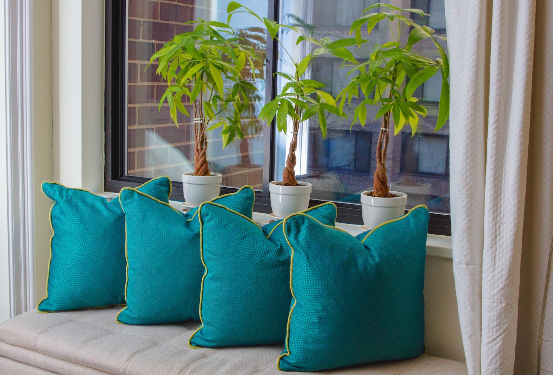 ChelleAlbert-Pillow--46.jpg
