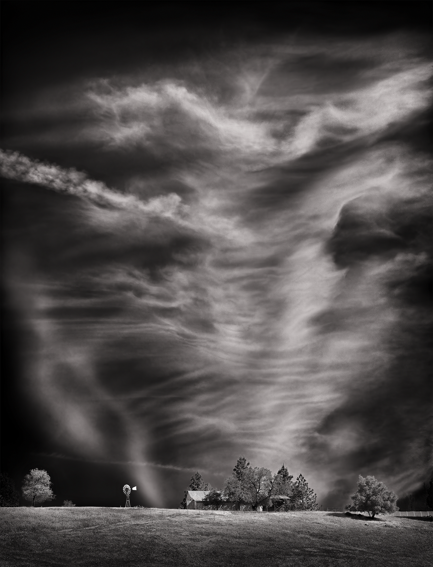 DilmaghaniD_Sutter-Sky.jpg
