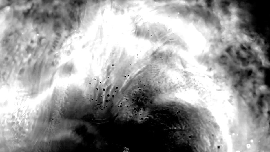 Screen Shot 2018-03-04 at 4.42.41 PM.png